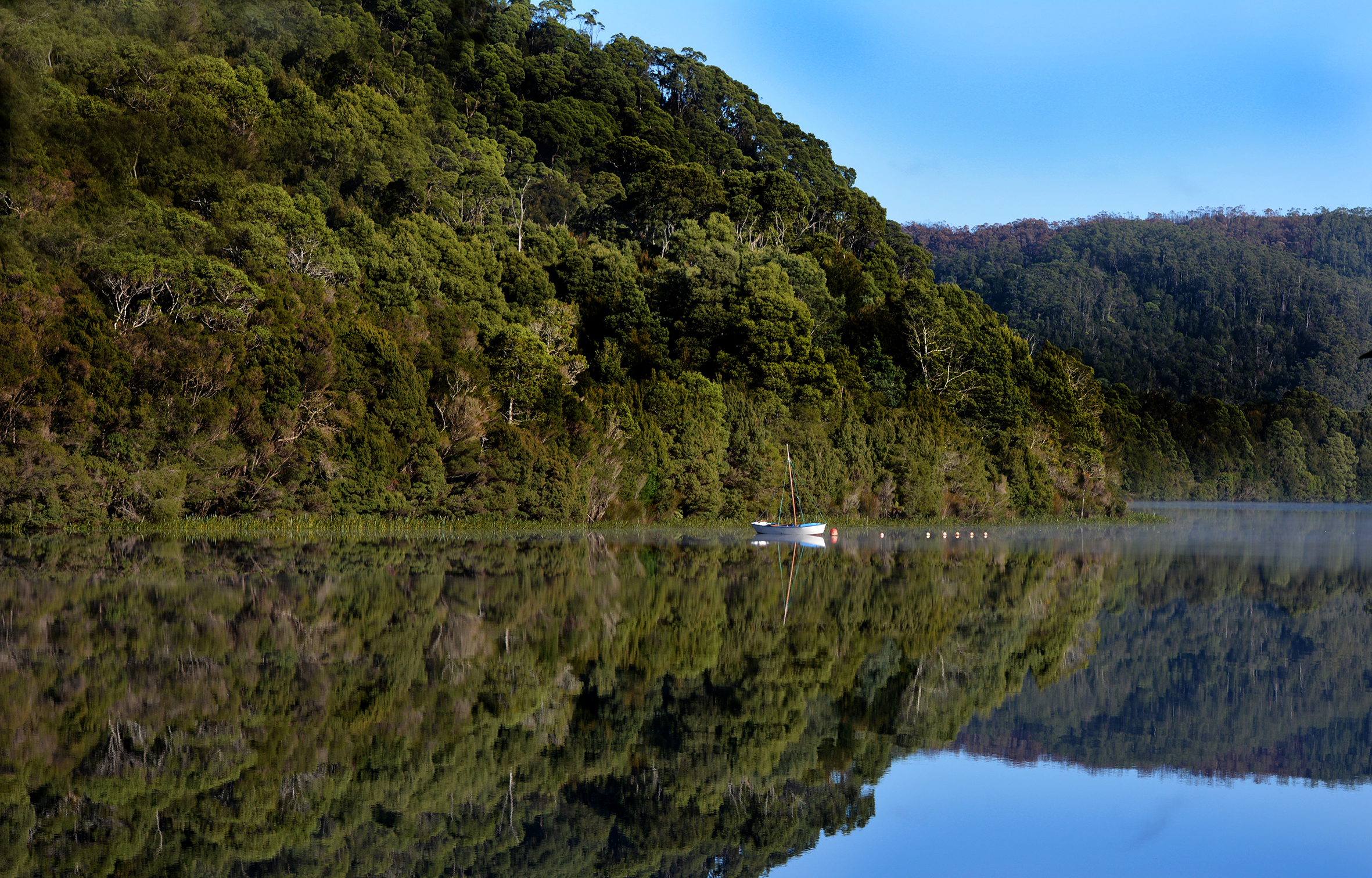 Reflections on the Pieman River, Corinna